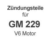 für V6 GM 229